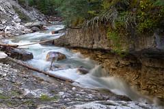 DSC_6483 (AmitShah) Tags: banff canada nationalpark