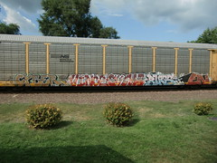 09-10-11 (119) (This Guy...) Tags: graf graff graffiti train traincar car box boxcar railroad rail road rr 2011 cyber vince sushi en bugs