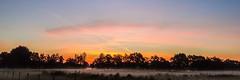 Goedemorgen (Harmen de Vries) Tags: pss:opd=1474479774 assen anreep schieven drenthe sunrise zonsopkomst outdoor sky lucht wolken clouds cloud landschap landscape dusk ochtendschemering mist nevel witte wievn