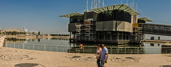Oceanario (antoniosimula) Tags: oceanario lisbon lisbona lisboa portogallo portugal area expo fish flora fauna nikon d3200 35mm 70300 tamaron ocean species pacific atlantic indian