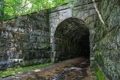 DSC_9603 (Copy) (pandjt) Tags: newburg newbrunswick canada ca nb bridge tunnel railwaytunnel cpr gibsonbranchline cprrailway stonearchbridge stonearchtunnel shawscreek
