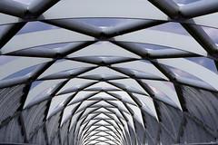 Art Roof (Franklin Vincentie) Tags: flyover road roof art rotterdam netherlands nederland pattern architecture bridge construction