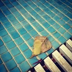 It is time... (SonOfJordan) Tags: color water عمان الاردن sonofjordan shadisamawi المملكةالاردنيةالهاشمية wwwshadisamawicom
