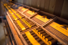 Image ID# Whalen-120828-5073 | Granada Cigars Two (joshwhalen) Tags: brown abstract horizontal closeup photography photo warm smoke fineart cigar cigars nicaragua centralamerica fineartphotography photogaph stockphotography fineartphoto fineartphotograph smokingobjects joshwhalenphotography whalenphotography joshwhalencom