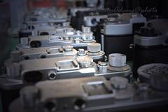 Pistoia - Mercato usato (Freddy Adams) Tags: mostra esposizione pistoia fotocamere