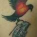 bird.grenade