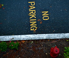 IT'S NO! (ikan1711) Tags: autumn fall rain rainyday noparking parking fallfoliage foliage fallflowers fallscenes autumnscenes parkingareas