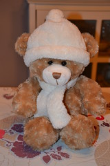 Little Bear (MissLilieDolly) Tags: bear little fluffy plush collection dolly miss lilie petit ours mignon peluche kawa missliliedolly
