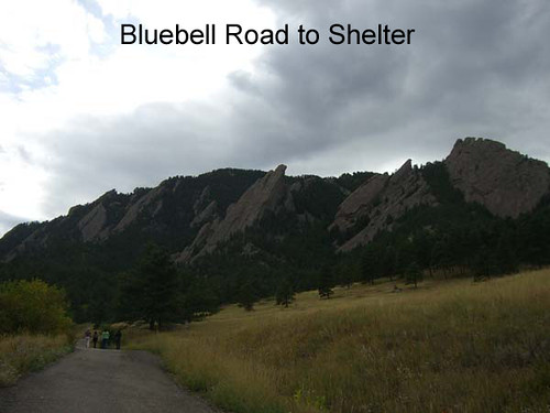 Photo - Bluebell Road going up to the Bluebell Shelter