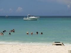 beach hotel palace palm aruba caribe riu oranjestad