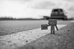 Far away ... (Nicolas Paumard) Tags: cute toy cardboard figurine danbo revoltech danboard quotidan nicolaspaumardphotographe