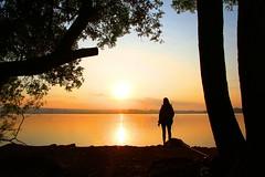 IMG_81643 (Max Hendel) Tags: maxhendelphotography bymaxhendel pormaxhendel crossingboracéiaitapuísp boracéiaitapuísp tieteriver riotietê centroeste paulista sun sol solnascente brilhodosol sunset silhouette brazil canon afternoon red fimdetarde hot sunsetofbauru