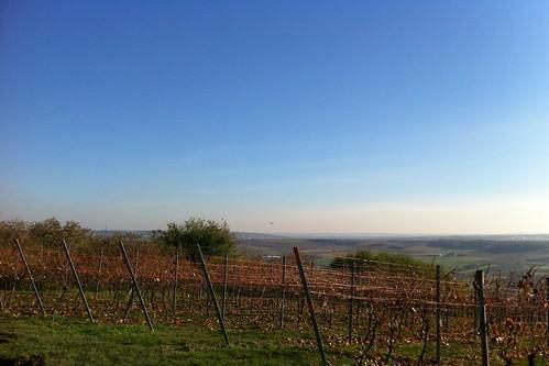 Rheinhessen im Herbst