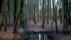 Coombe (wetbicycleclappersoup) Tags: icm intentionalcameramovement