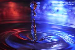 Drops_22 (Henrique J. Marques Nascimento) Tags: blue red macro verde water gua azul drops nikon sigma drop vermelho gotas forms gota formas supermacro henrique sigma105 encarnado sigma105mm smacro nikond90 henriquenascimento
