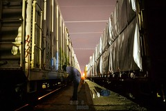 Power Lines (208 Bench) Tags: art train graffiti action rail etc boxcar graff freight reefer armn asic
