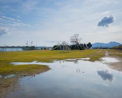 PhoTones Works #2409 (TAKUMA KIMURA) Tags: city plant reflection nature river landscape puddle toys boat town specular     omd kimura        takuma    em5     photones