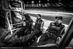 APR-Motorsport-Rolex-24-2013-135