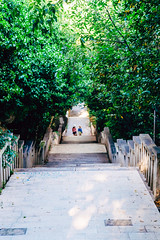 A walk up Marjan Hill (norsez {Thx for 13 million views!}) Tags: 40mm apsc cmos fujifilm raw xpro1 xtrans classic fastlens fuji fujixpro1 fujifilmxpro1 lens manualfocus nokton voightlander xp1 split splitskodalmatinskaupanija croatia hr