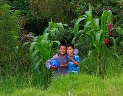 The boys (Calley Piland) Tags: guatemala patulup mission stoves cheyenneumc vimguatemala vim methodist umvim umc