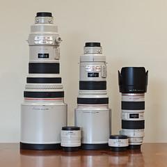 Great White Wildlife Rig (Xenedis) Tags: canon canonef70200mmf28lisusm canonef300mmf28lisusm canonef400mmf28lisusm canonextenderef14xii canonextenderef2xii canonlseries equipment extender gear lseries lens lenses prime primelens supertelephoto telephoto zoom zoomlens