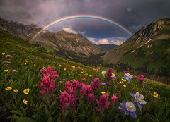 Mountain Sanctuary (Candace Dyar Photography) Tags: mountains san juan colorado wildflowers paintbrush columbine rainbow summer basin trail landscape nature candace dyar photography storm