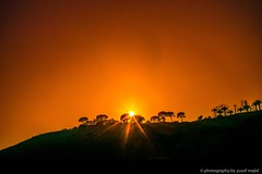 Beyond the hill (yusof majid) Tags: mysticism daylight light nature green landscape hill trees flame bright yellow star sun orange sunset