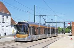 T3129 82 (brossel 8260) Tags: belgique bruxelles tram stib
