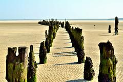 Wangerooge - Ostanleger (fish.eye65) Tags: wangerooge ostanleger oststrand strand beach verfall decay holzfosten woodenposts watt waddensea nordsee northsea ostfriesland