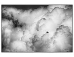 Freedom (Margall photography) Tags: freedom