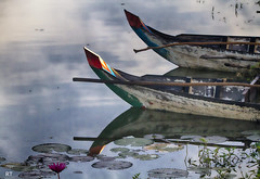 Cambodia -   Siem Reap - boats (Rui Trancoso) Tags: cambodia siem reap