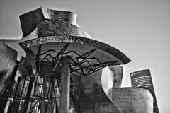 Guggenheim (R.D. Gallardo) Tags: bw blanco black bn negro white raw hdr