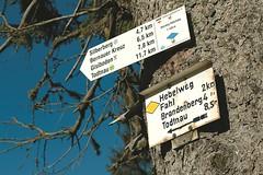 AKZENT Hotel Lawine_Todtnau_Wanderwege (AKZENT Hotels e.V.) Tags: wandern wanderwege hotel todtnau