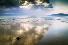 Algas en la arena (Franci Esteban) Tags: algas arena mar playa playadeloslances dorado parajenaturaldeloslances oceanoatlntico tarifa nubes nublado reflejos agua landscape paisaje marina celeste brillo canon7d tamronspaf1750mmf28