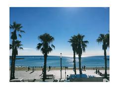 (Gabriel Aljundi) Tags: iphone se minimal barcelona sea ocean water blue palm trees lightroom vsco aire libre daylight light luz sky foto summer verano colour color day digital exposure beautiful belle bcn beach love cool lovely good