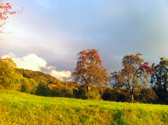 Sunset (blogspfastatt (+3.000.000 views)) Tags: autumn light sun color automne landscape dawn twilight colorful colours lumiere crpuscule couleur crepuscule pfastatt blogspfastatt
