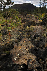 Lava and Trees (Kenneth David Geiger (aka Ken Foto)) Tags: volcano lava sunsetcraternationalmonument