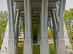 columnas del viaducto