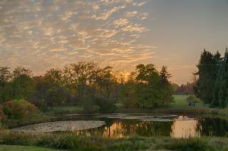 Botanischer Garten nach Sonnenuntergang
