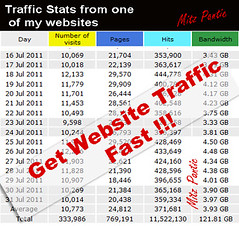 Traffic generator, trafik website