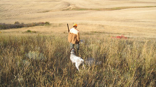 Montana Fishing Lodge - Bighorn River 17