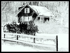 Black & White Winter Scene - Edited Photo by STEVEN CHATEAUNEUF - October 30, 2012 (snc145) Tags: door trees windows roof winter chimney sky usa house snow cold nature forest photoshop fence landscape outside photography photo blackwhite scenery photos massachusetts digitalart bushes chelmsford grovestreet picnikediting picasa3editing stevenchateauneuf october302012
