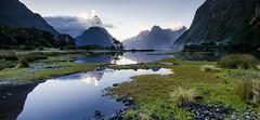 Milford Sound (Tom Green Photo) Tags: newzealand seascape landscape glaciers fjord wilderness milfordsound fiord fiordland fiordlandnationalpark