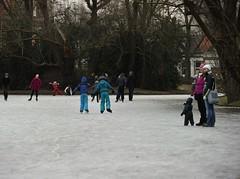 -25100- (Yardenier- Geert van Duinen@NPS) Tags: groningen ijsbaan noorderplantsoen leekstermeer hoogkerk ijsclub lageland