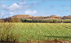 27/365 - Sun, Three Hills and a Windmill (Steviepix) Tags: winter england rural landscape photo walk buckinghamshire january ivinghoebeacon pitstone pitstonewindmill 2013 steviepix