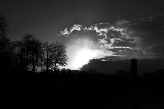 .. (lux fecit) Tags: trees winter bw sun paris contrast luxembourg counterlight