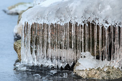 When the ice was still there (KennethVerburg.nl) Tags: winter lake cold ice netherlands dutch landscape frozen meer bevroren nederland flevoland landschap almere gooimeer ijs almerehaven