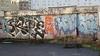 skube horfé (lepublicnme) Tags: streetart paris graffiti january pal skub orphée horfé frabce 2013 skube horfée orfé orphé horphé skubb horphée skubbe orfée palcrew