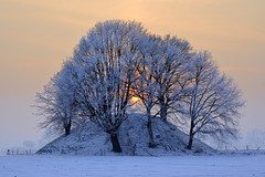 Tumulus (pierre hanquin) Tags: blue trees winter light sunset sky sun snow color colour tree nature colors field rose landscape geotagged rouge soleil nikon euro