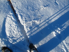 Shadows (Ole Husby) Tags: shadow snow norway norge sn skitracks skygge skispor melhus img7849